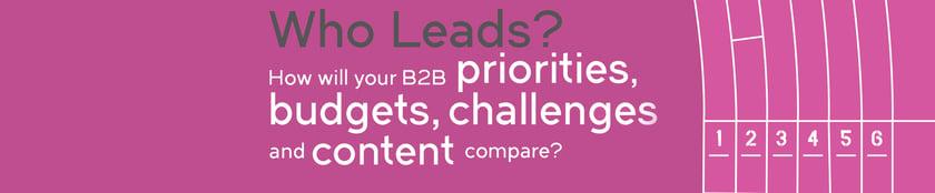 Irish B2B Digital Marketing Survey 2018 | Squaredot B2B Marketing