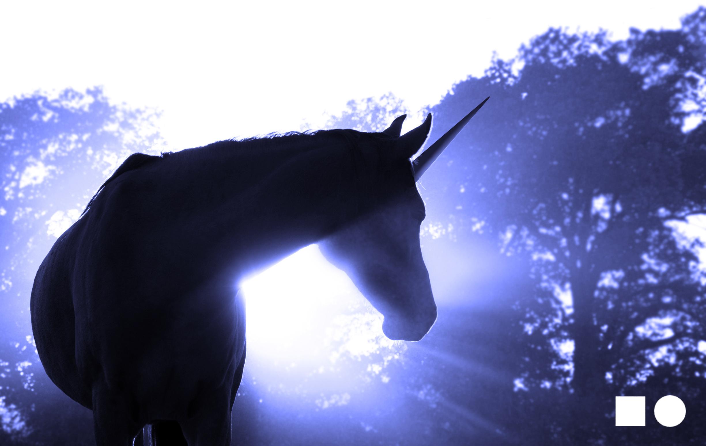 Unicorn_Body